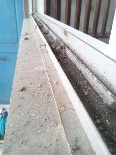 ハウスクリーニング 広島 窓ガラスサッシクリーニング