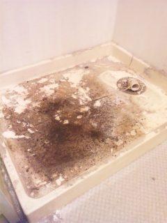 引越し前後 ハウスクリーニング 広島 洗面所